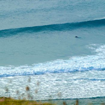 Surfing Feat Image